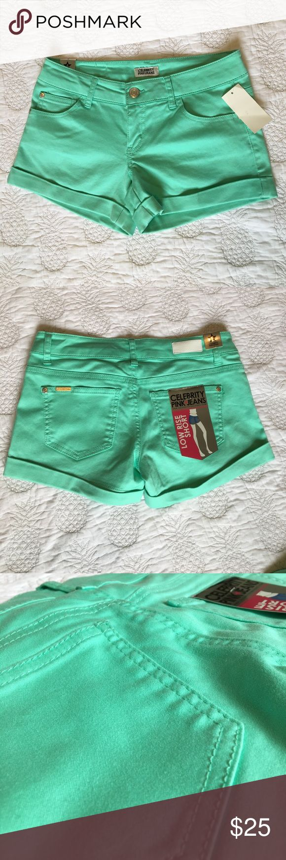 Celebrity pink jeans Aqua shorts This is a pair of NWT celebrity Pick k jeans in an aqua color cotton short. They are stretchy and very breathable and he perfect staple to last all summer long! The bottom of each leg is slightly cuffed, while there are 5 functional pockets. These are in perfect condition, I simply forgot I had them and are too short for me now (this mama shouldn't wear short shorts!). All retail tags are still in tact. These go perfectly with your favorite bikini, a white…