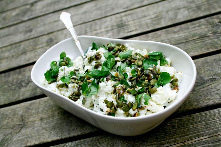 """Her får I endnu en lækker salat , som er inspireret af Claus Meyers skønne bog """"Salatværkstedet"""". Vi spiste den som tilbehør til en gammeldags oksesteg, men den vil også egne sig rigti…"""