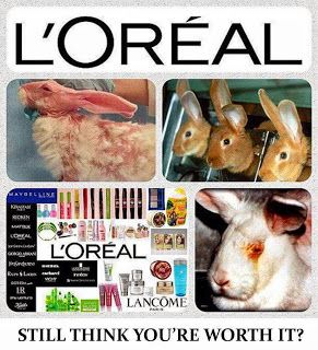 Cosmetic Companies that test on animals