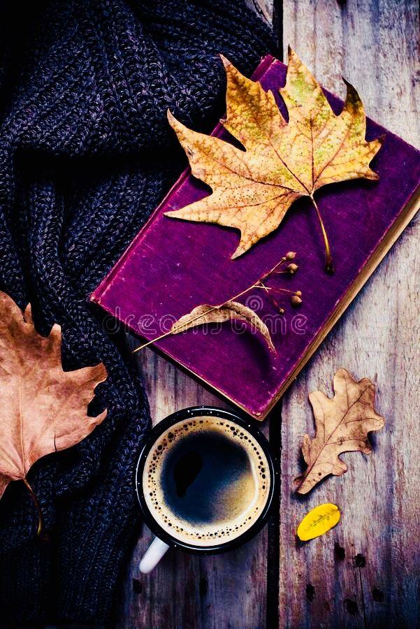 Pin by Mimmi Penguin 2 on Purple and Orange Autumn