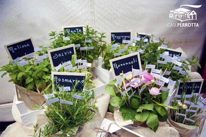Centrotavola per matrimonio con il tema delle erbe aromatiche