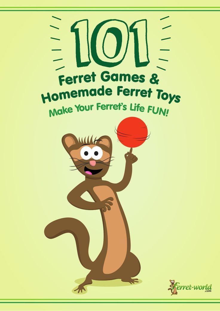 101-ferret-games-homemade-ferret-toys by Ferret-World .com via Slideshare