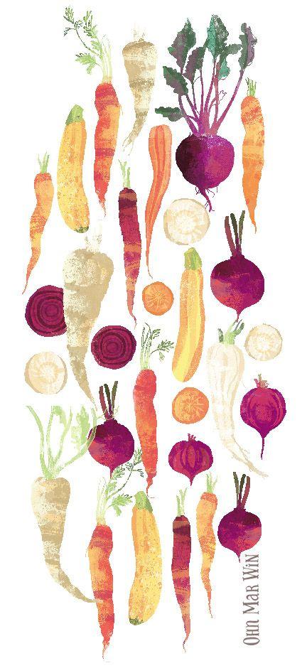 Autumn vegetables Carrots beetroot parsnip courgette Ohn Mar Win