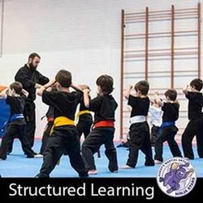 Structured Learning is crucial to developing skills in martial arts. Not only does it give the students a refference point to work from it also provides a sence of process and security  so that students know where they are on their journey from learning beginner to more advanced techniques. http://www.guestsmartialarts.com.au/kids-martial-arts.html