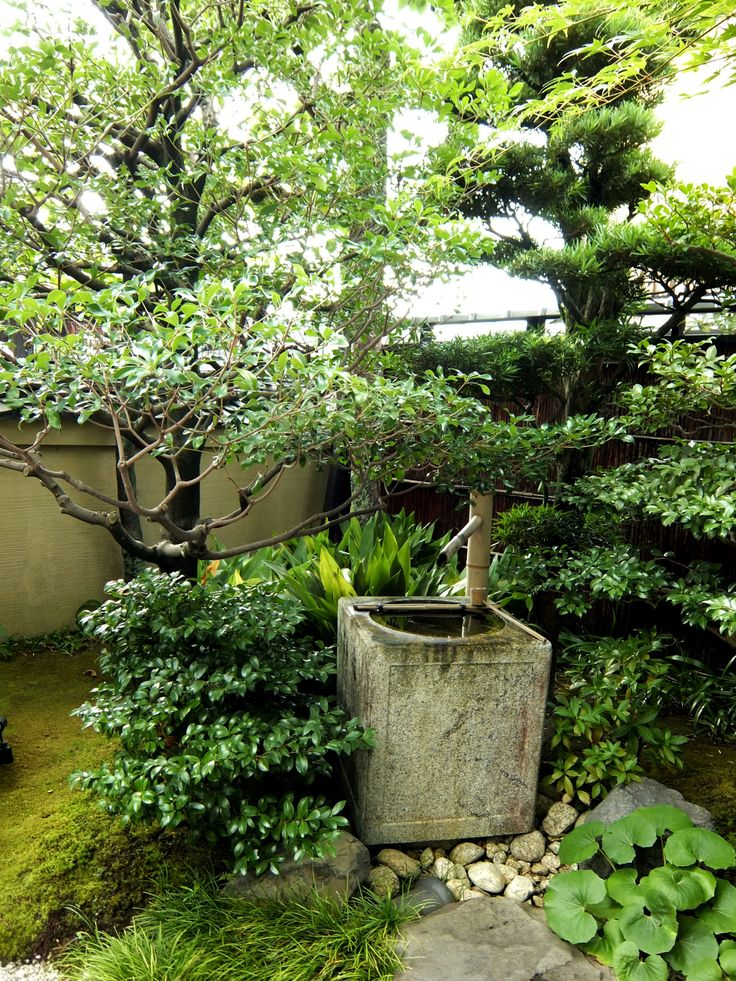 17 Best images about Engawa Japanese garden viewing