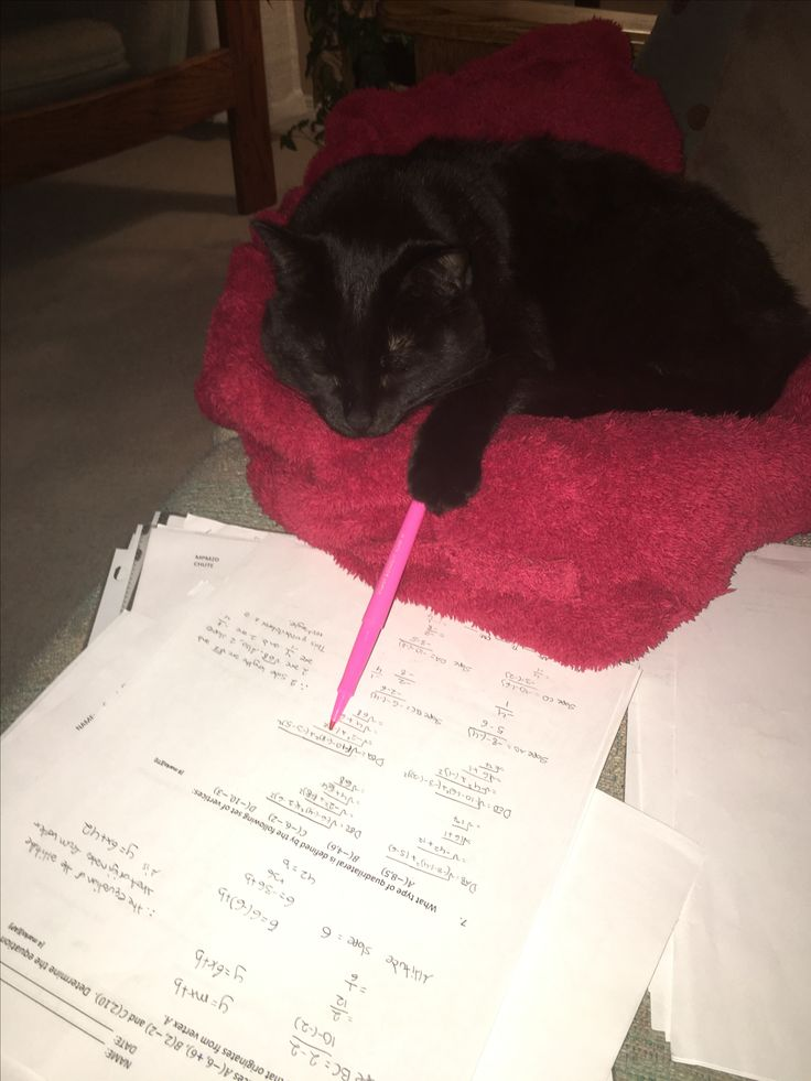 "Snookie: ""So over this marking!"""
