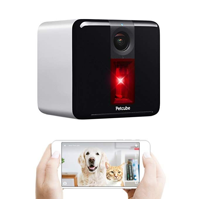 Petcube Play Pet Camera With Interactive Laser Toy Monitor Your Pet Remotely With Hd 1080p Video Two Way Audio Night Vision Pet Camera Petcube Night Vision