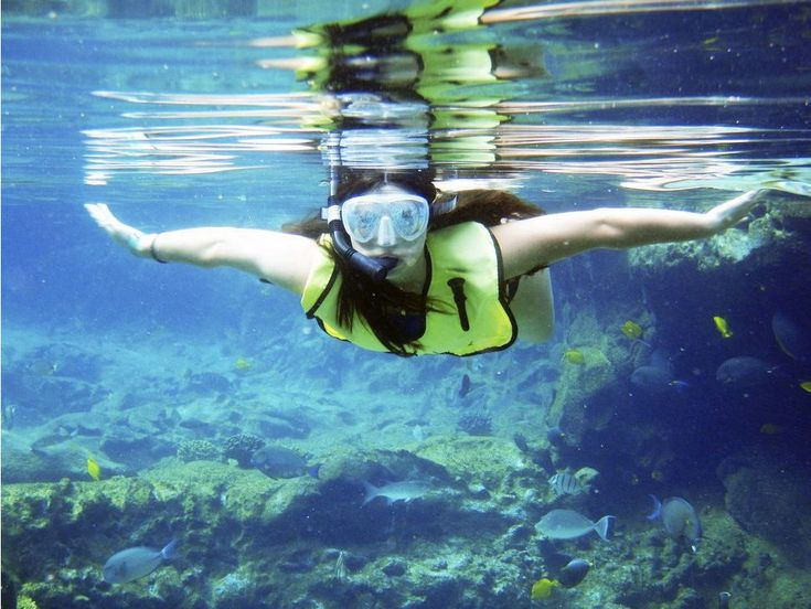Snorkel, swim, repeat: Experiencing the Caribbean by boat