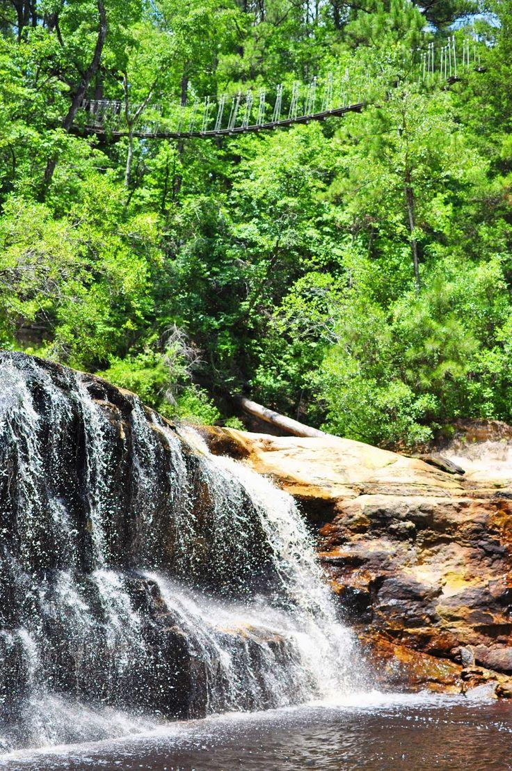 Carvers Falls Fayetteville North Carolina NC waterfalls
