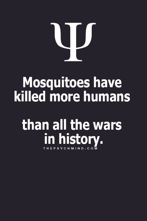 Looks like there should be a war on mosquitos to curb their taste in humans.