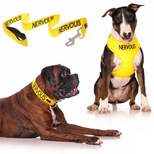 10% off yellow NERVOUS medium combo sets plus FREE SHIPPING within Australia. Models: Boxer Dog & Bull Terrier