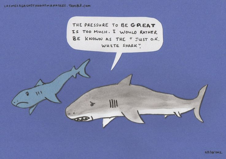 shark week puns | 27 days left to go on the crimes against hugh s manatees kickstarter