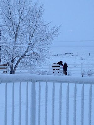 """""""Living"""" with Chronic Pain: THE PAIN OF WINTER"""