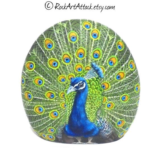 A beautiful peacock hand painted on a rock by RockArtAttack!