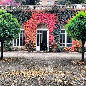 Autumn in Berlin