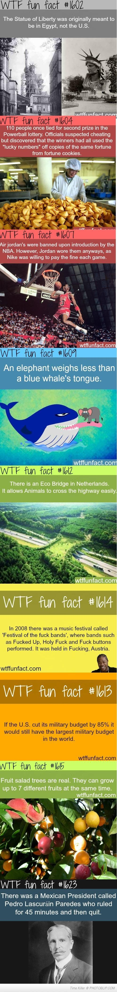 Amazing facts!!! Mind blown