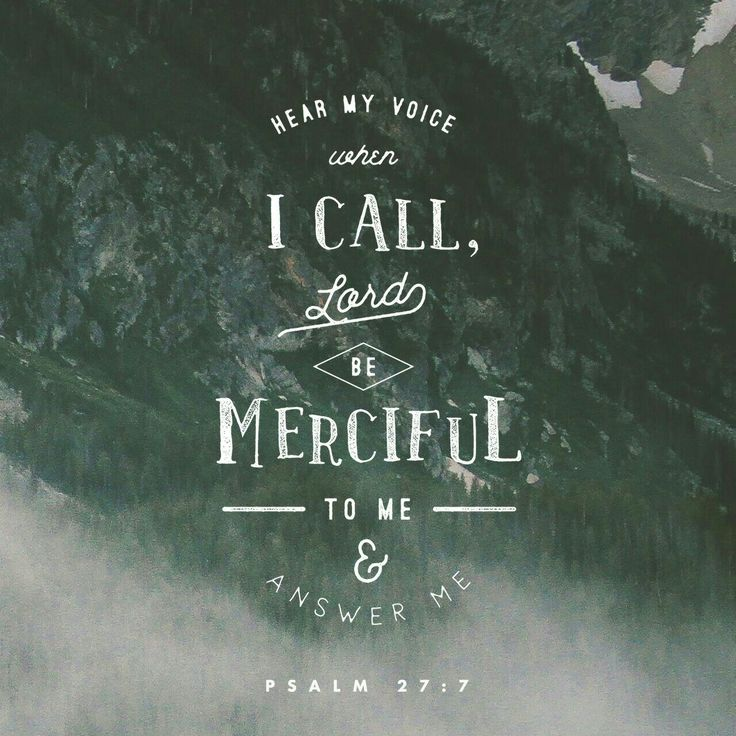 Hear, O Lord , when I cry with my voice: have mercy also upon me, and answer me. Psalms 27:7 KJV http://bible.com/1/psa.27.7.KJV