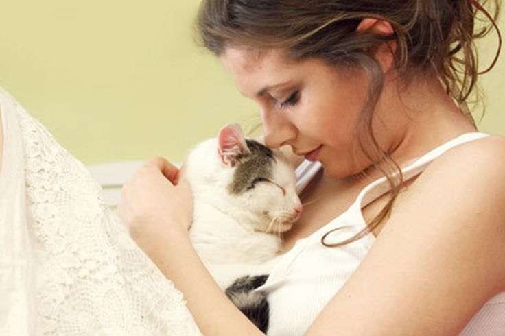 gituaja.com - nih alasan kalo mau melihara kucing (5)