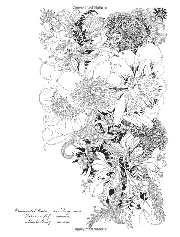 Floribunda A Flower Coloring Book Leila Duly 9781780677682 Amazon