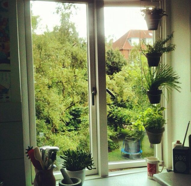 Window farming