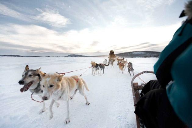 Diez cosas que no olvidarás de la Laponia finlandesa