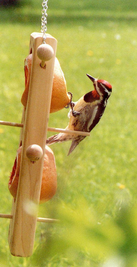 Cette mangeoire à oiseaux tout-cèdre vous permet d'alimenter de suif (en hiver) ou fruits (en été) pour les oiseaux Il s'adapte parfaitement à un tour, boule de suif recouvert de graines, ou une orange, pomme ou pamplemousse. Vous ravira les nombreux oiseaux épris de fruits comme les orioles, grives, cardinal, pic maculé, violet pinsons, mésanges et colibris. Nous avons trouvé des oranges pour être le plus populaire et qu'ils ne disparaissent presque plus vite que nous pouvons les mettre…