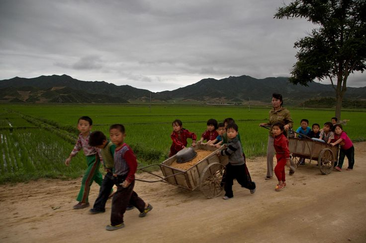Rare photos of life in North Korea; RARE PHOTOS OF LIFE IN NORTH KOREA A look into the daily lives of people in North Korea.  In picture: Young North Korean school children help to fix pot holes in a rural road in North Korea's North Hamgyong province.