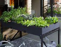 Des idées pour aménager un carré potager sur un balcon ou une terrasse
