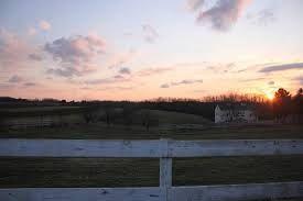 Image result for solar farm sunset