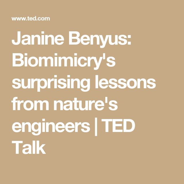 Janine Benyus: Biomimicry's surprising lessons from nature's engineers | TED Talk