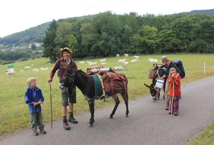Rando avec ânes bâtés en #Morvan, #Bourgogne
