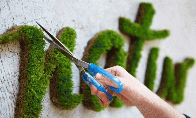 Grafitis con musgo
