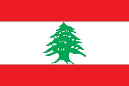 Free Lebanon flag graphics, vectors, and printable PDF files. Get the free downloads at http://flaglane.com/download/lebanese-flag/