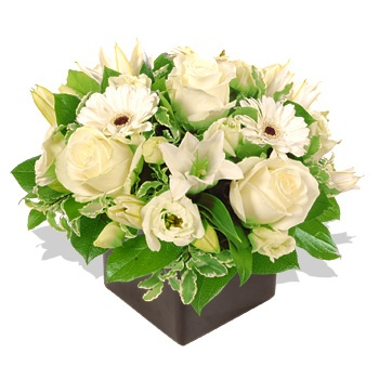 The pure white roses, lilies and gerberas arranged in a small glass cube give the impression of purity – snow white would have loved them! A simple show that lets the beauty of the flowers speak for itself. Send it now for only $83.