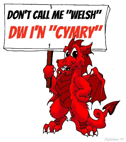 """Wales"" and ""Welsh"" come from the Anglo-Saxon word, 'Walha', meaning 'foreigner' or 'stranger'. Whereas, The modern ""Welsh"" name for the Welsh People is ""Cymry"", which comes from the old ""Welsh"" word ""Combrogi"", meaning fellow Countryman."