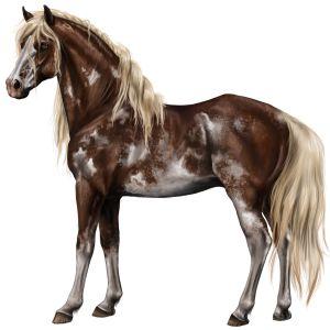 Silky, Pferd Paint Horse Palomino mit Tobiano-Scheckung #381 - Howrse