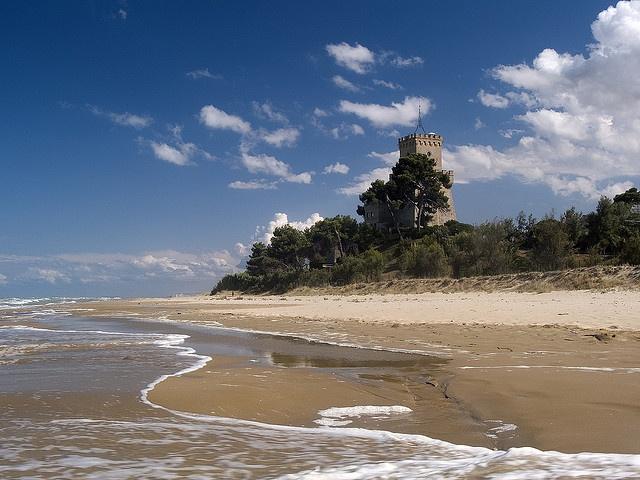 pineto, on the adriatic