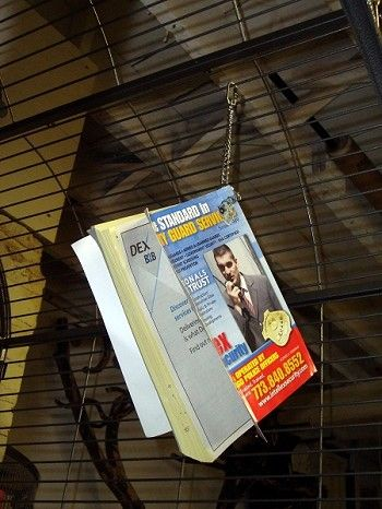 """Who uses phone books any more? Drill a hole, use a chain and quick link. No drill? Make a """"house"""" on the cage floor. Big birds usually have wide bar spacing - stick the pages through the bars.    Note: Have a broom and dust pan close."""