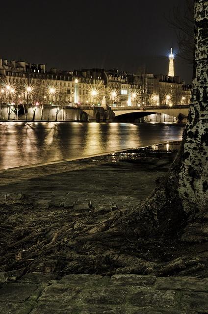 1000 images about paris arrondissement 6 jardin du for Le jardin hivernal du off paris seine
