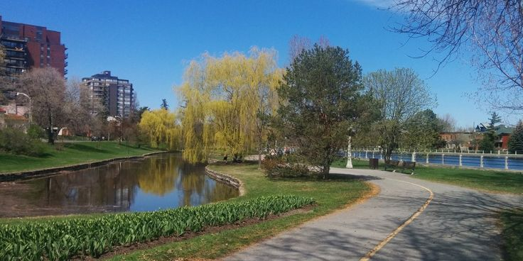 Get fit in downtown Ottawa - try running by the Rideau Canal