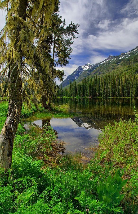 Fish Lake, Wenatchee National Forest, Washington by desiree