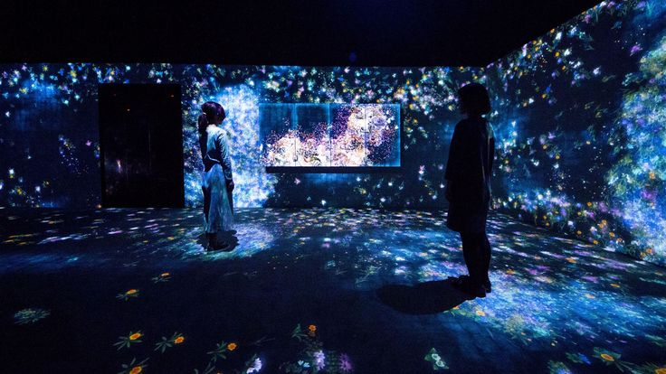 TeamLab, Flowers and People, Cannot be Controlled but Live Together – A Whole Year per Hour, California, 2015