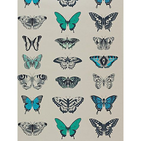 Buy Harlequin Papilio Wallpaper Online at johnlewis.com