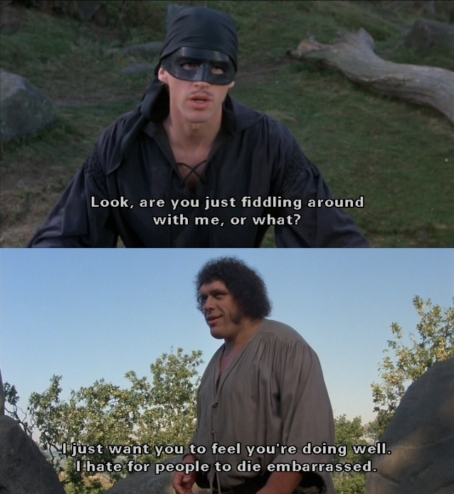 the princess bride movie essay Though i saw the princess bride for the first time when i was a kid, i only recently  got around to reading the book the film is one of the rare.