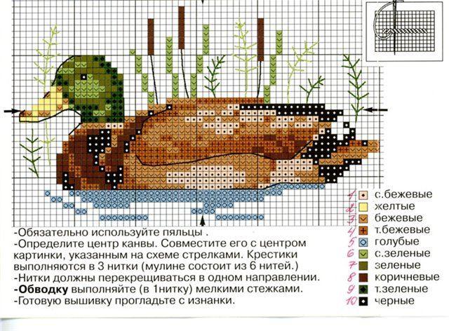 Gallery.ru / Фото #1 - 2-034 - Orlanda