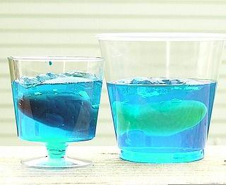 Fancy jello shots