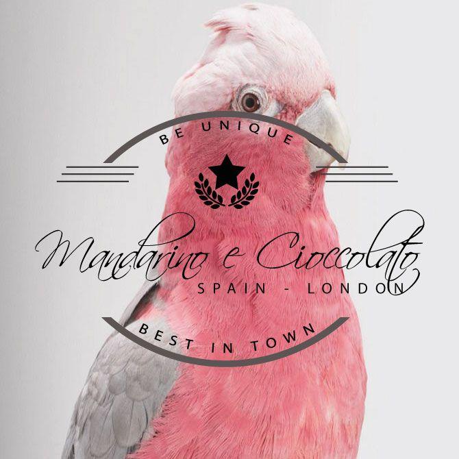 Mandarino e Cioccolato | Estudio Boutique de Diseño Digital. ¿Te animas a conocernos?