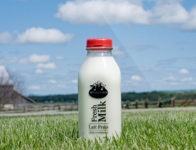 Sheldon Creek Dairy, located in Loretto, Ontario, produces creamy, palate-pleasing #Ontario #milk that showcases the richness of Ontario's dairy cows. Taste the local difference today!