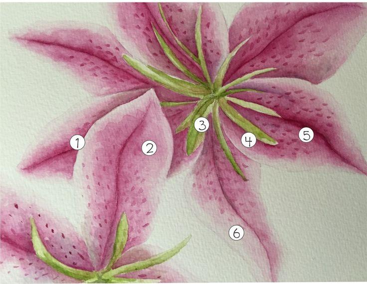 Watercolor flower tutorial. Erna Van Dyk