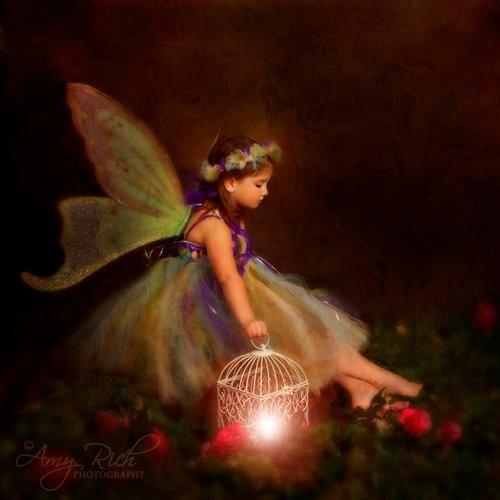 fairy and lanternFlower Girls Dresses, Forests Fairies, Flower Girls Tutu, Girls Room, Tutu Dresses, Flower Girl Dresses, Flower Girl Tutu, Enchanted Night, Dragons Fantasy